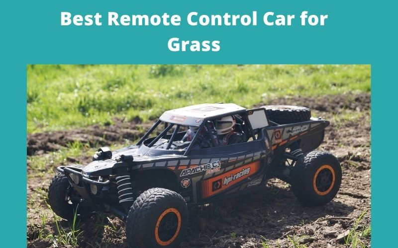 Best Remote Control Car for Grass